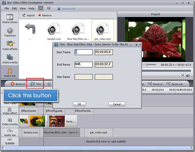 Any Video Editor User Guide - How to Mix Audio in Any Video