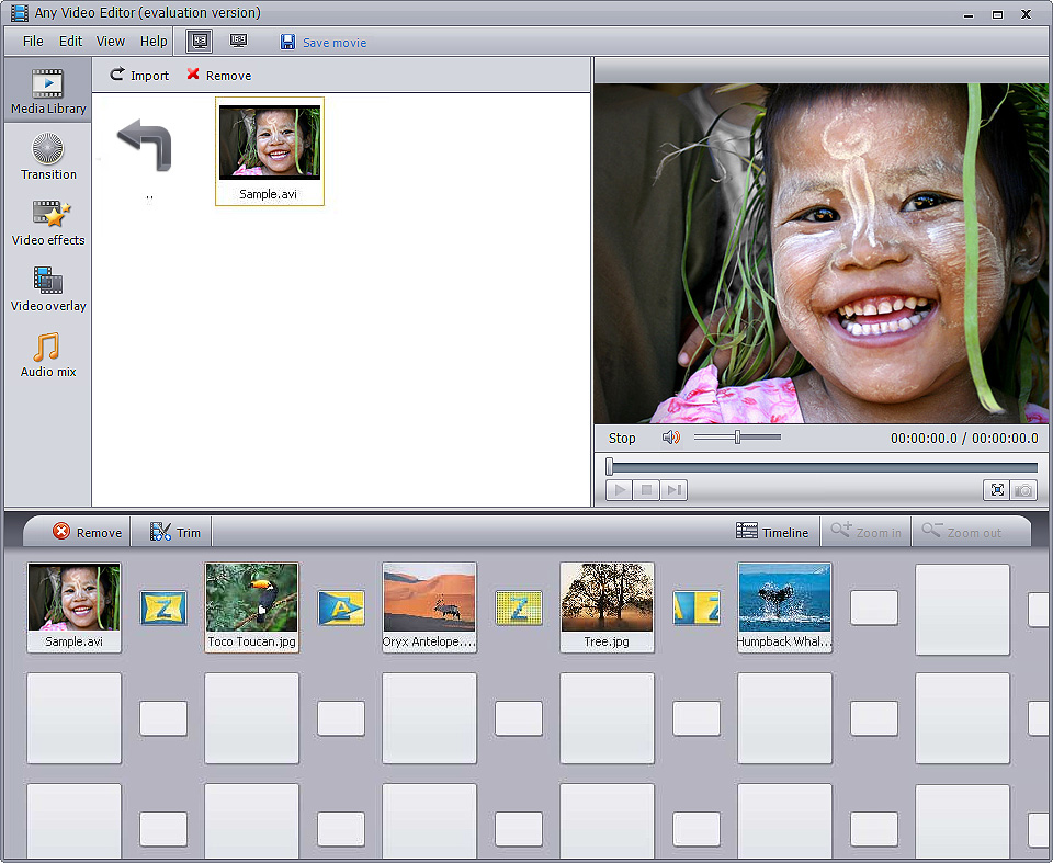 Features of Any Video Editor \u2013 Edit Video Files with Transitions and